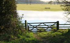 Invitation To Tender - Enabling access works for Bishops Fen