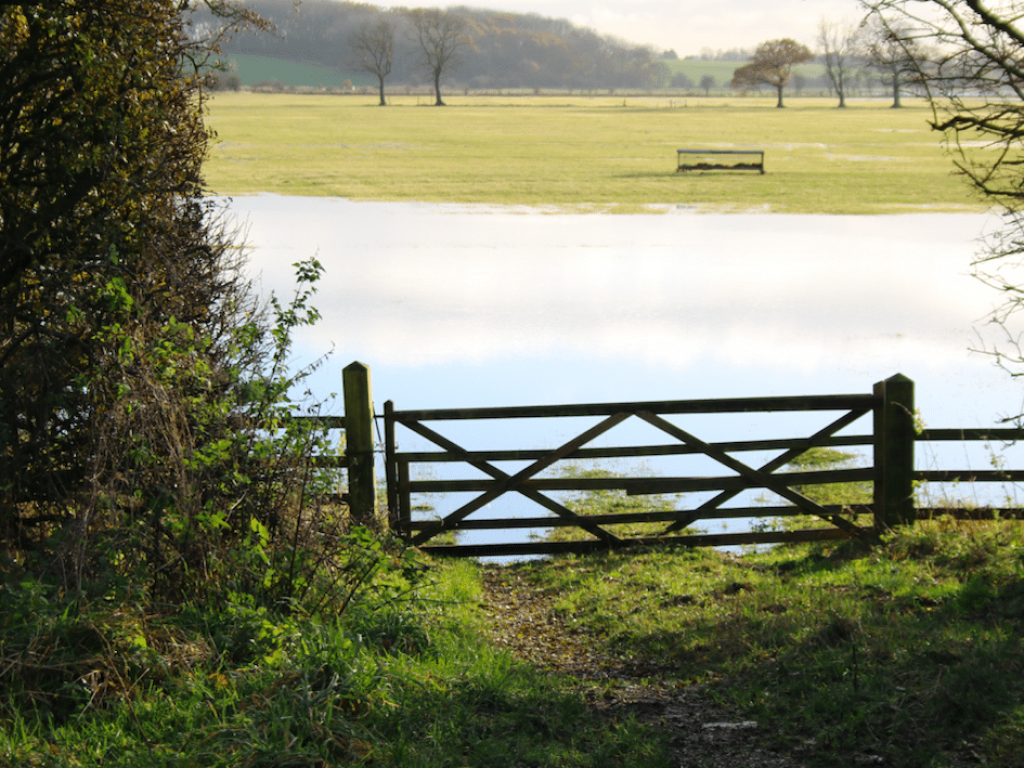 ***NOW CLOSED*** Invitation To Tender - Enabling access works for Bishops Fen