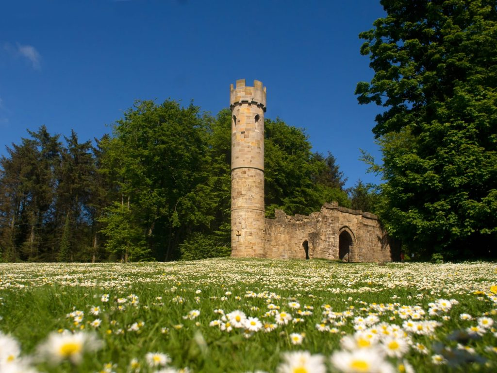 Invitation To Tender - To deliver a sculpture trail in Hardwick Park 1